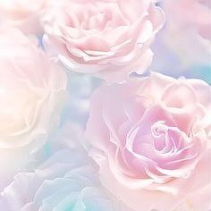 fleur_4